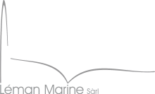 Logo LM couleur969696